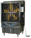 Охладитель воздуха Master BC 220 в Красноярске